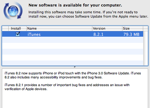 iTunes 8.2.1 update screen.
